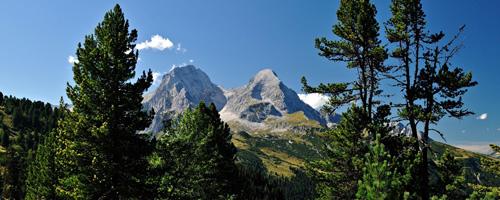 mountainrangethroughtrees