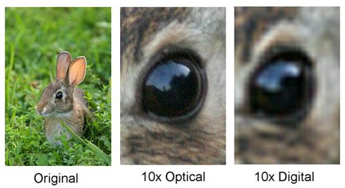 digital-vs-optical-zoom
